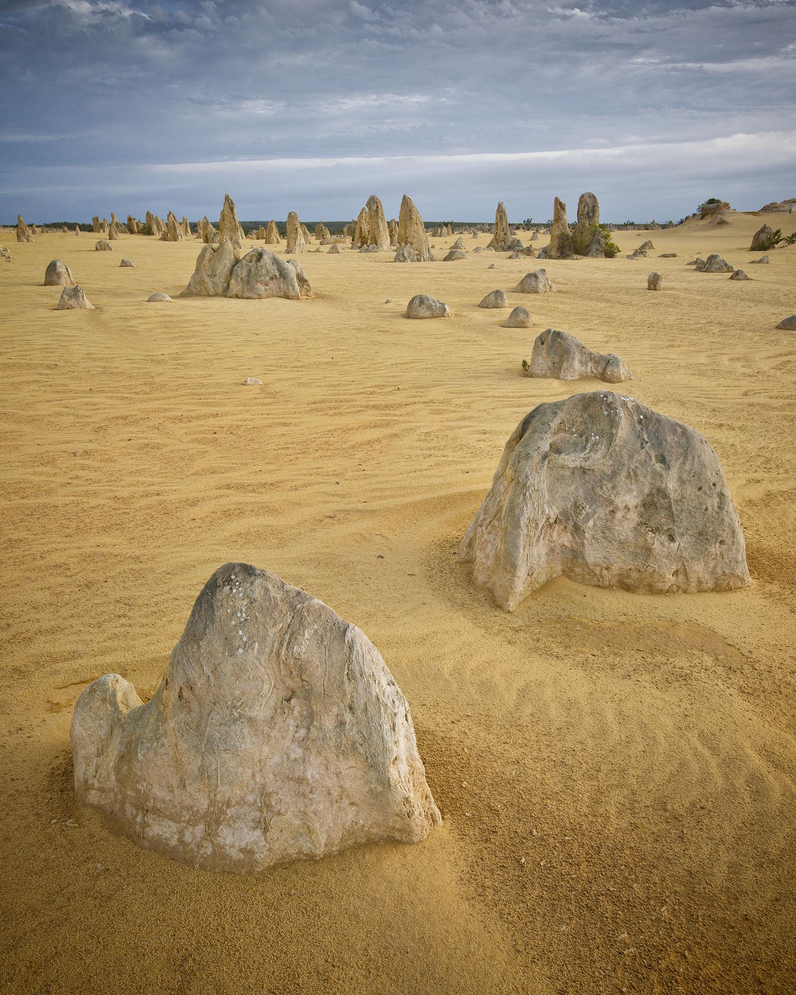 Pinnacles Desert, Cervantes Western Australia